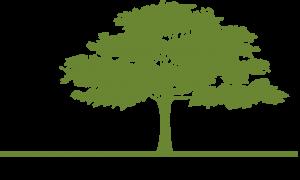 BoardDocs logo